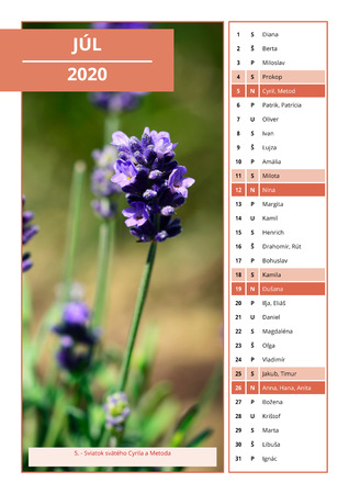 background Slovak calendar with names for July 2020