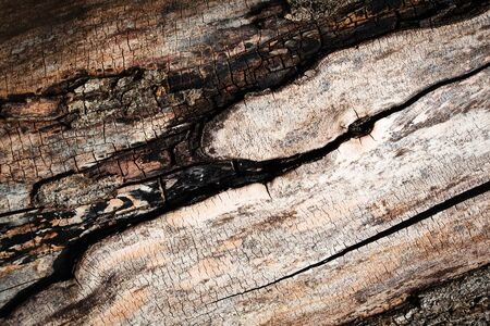 abstract background or texture detail of old weathered wood surface