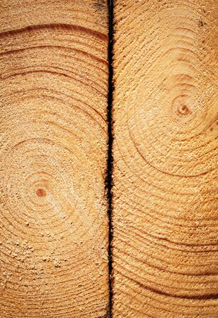 background or texture two spruce boards with annual rings Stockfoto