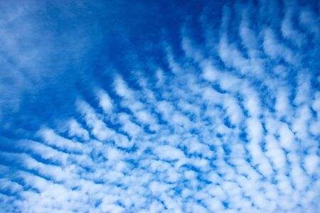 background or texture details sky with clouds algae