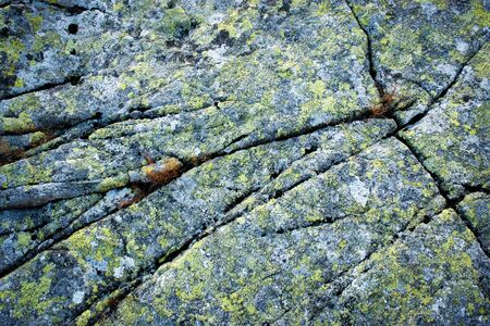abstract background or texture granite cracked rock with yellow moss