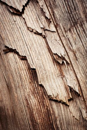 abstract background or texture detail of broken dark wood structure