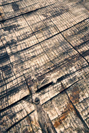 abstract background old wooden spruce board with grooves