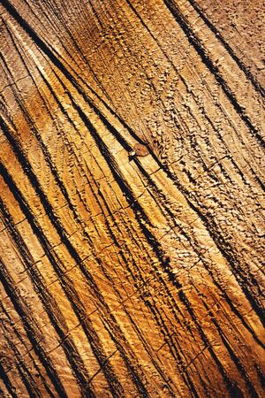 abstract background or texture wood with grooves from a chainsaw