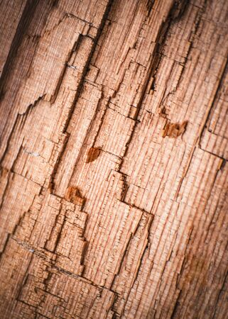 background or texture abstract detail of broken rotten wood 写真素材