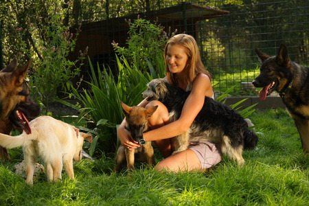 shepperd: A young beautiful woman with blonde hair is playing lovingly with a bunch of dogs in a backyard garden with green grass