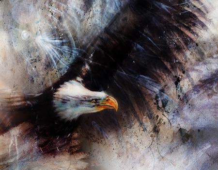 aguila calva: hermosas �guilas aer�grafo sobre un fondo abstracto, uno estira sus alas negras para volar, en el fondo abstracto