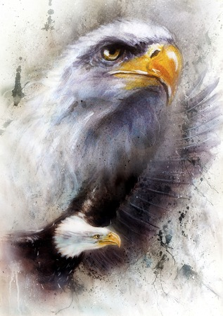 beautiful painting of a two  eagles, on an abstract textured  background. Stock Photo
