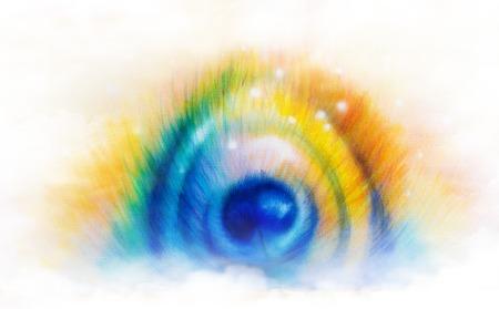 pluma de pavo real: Hermosa pintura del color de Infograf�a de pluma de pavo real en el fondo blanco.