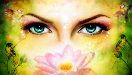 A pair of beautiful blue women eyes beaming up enchanting from behind a blooming rose lotus flower, with bird on yellow and green abstract background. eye contact