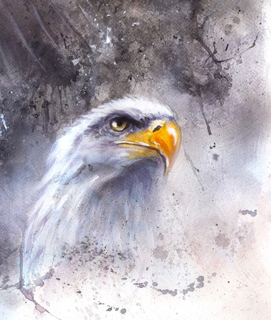 american silver eagle: beautiful illustration painting of  eagle on an abstract background, one stretching his black wings to fly, on abstract background