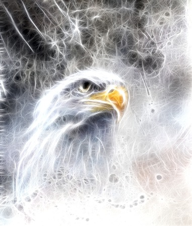 airbrush: beautiful airbrush painting of  eagle on an abstract background, one stretching his black wings to fly, on abstract background