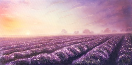 Original oil painting of lavender fields on canvas.Sunset landscape.Pink and purple morning light, color illustration. illustration