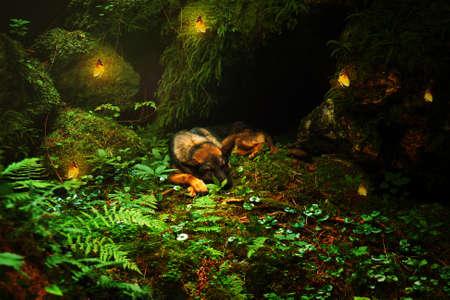 mariposas amarillas: Alemania dormir Perro pastor se en la piedra con con mariposas amarillas en la luz hermoso bosque. Foto de archivo