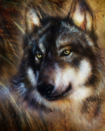 wolves: Wolf painting, color  background on paper , multicolor illustration. Stock Photo