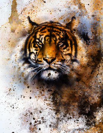 prints: tiger collage on color abstract  background,  rust structure, wildlife animals, eye contact. Stock Photo