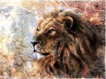caritas pintadas: hermosa pintura de una cabeza de león con un patrón desierto expresión majesticaly pacífica. Foto de archivo