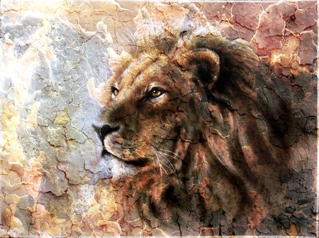 beautiful  painting of a lion head with a majesticaly peaceful expression desert pattern. Standard-Bild