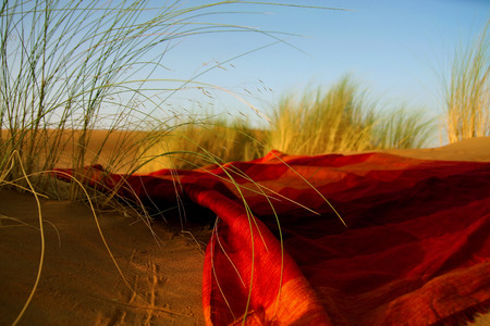 desierto del sahara: paisaje marroquí del desierto con plantación desierto hierba y manta roja ornametal, dunas en el horizonte y los pasos interminables sobre la superficie de la arena resplandeciente Foto de archivo