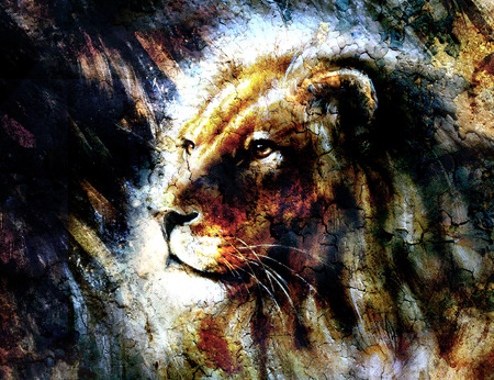lion head: beautiful  painting of a lion head with a majesticaly peaceful expression, profile portrait