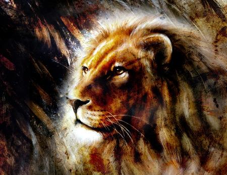 Célèbre Belle Lion. Fond d'écran HD à télécharger   Elegant Wallpapers VG67
