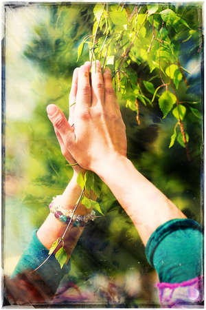 color healing: Spring prayer – adoring the healing powers of the spring. Tree in hands, with color pattern.