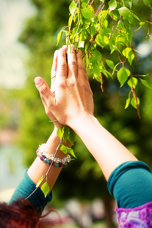 adoring: Spring prayer – adoring the healing powers of the spring. Tree in hands Stock Photo
