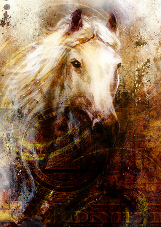 cabeza de caballo: Cabezas de caballo, fondo ocre abstracto, con un dólar collage. textura de fondo.