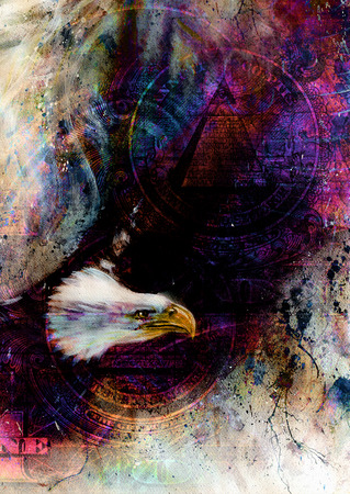 fascinated: flying eagle beautiful painting illustration, with one dollar collage. texture background