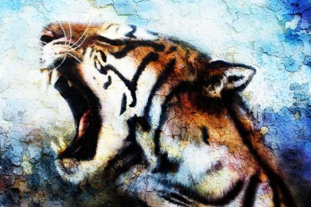 sumatran: painting Sumatran Tiger Roaring