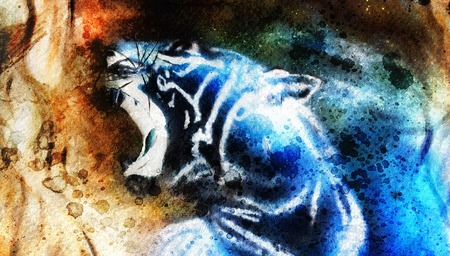 whisker characters: painting abstract tiger collage on color space background, wildlife animals.