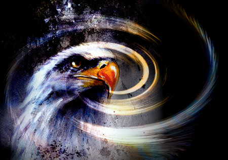 bald woman: painting  eagle and  feathers on an abstract background , USA Symbols Freedom