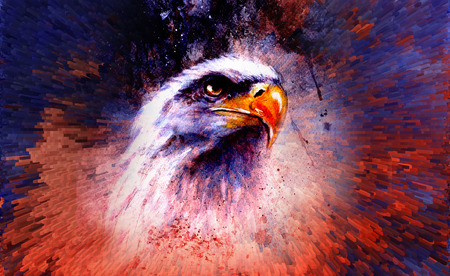 black american: beautiful painting of eagle on an abstract background,color with spot structures.