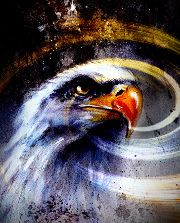 american silver eagle: painting  eagle on an abstract background, USA Symbols Freedom.