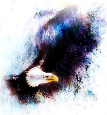 marvelous: eagle on an abstract background,color with spot structures. Stock Photo