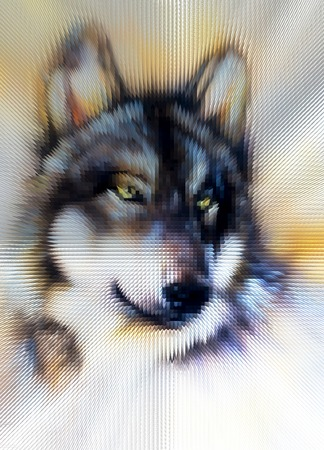 lobo: Ilustraci�n Wolf. Dise�o poli baja.