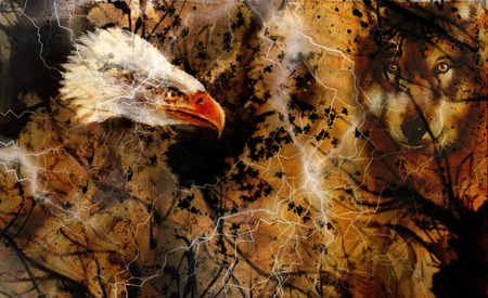 soulmate: Wolf and eagle color painting, feathers background, multicolor collage illustration. White lightning.