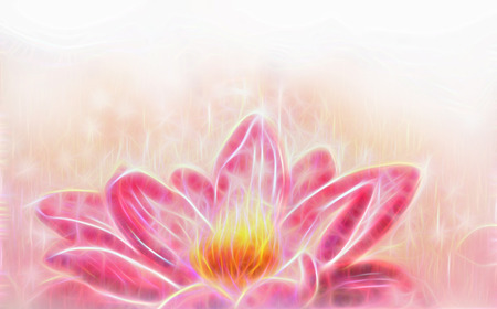 pink flower background: Lotus flower and white circle bokeh and white mist. Illustration collage fractal effect.