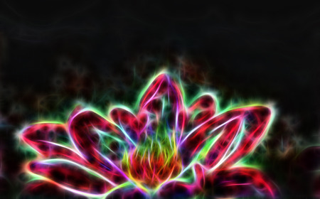 shallow: Lotus flower and black background.  Illustration collage fractal effect. Stock Photo
