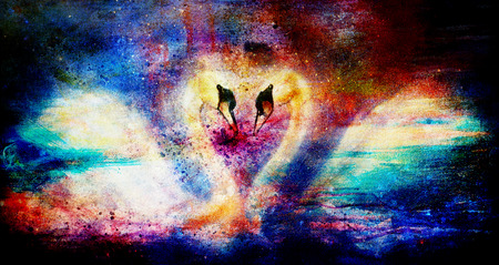 Romantic two swans on color abstract structure background