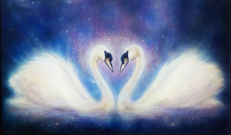 swimming swan: Romantic two swans on cosmic space, and stars