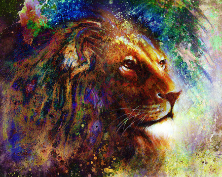 face  profile: lion face profile portrait, on colorful abstract feather pattern background. Stock Photo