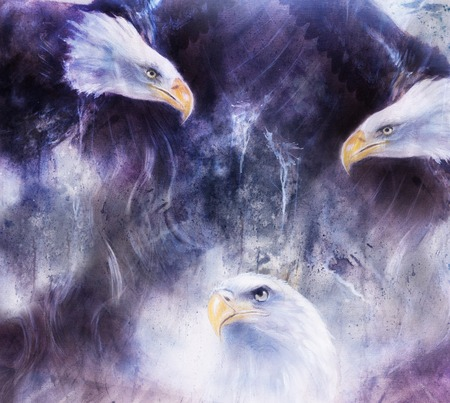 beautiful painting of  eagles on an abstract background collage.