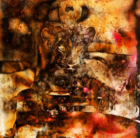 lion cub: Lion cub photos and painting Abstract Collage. Eye contact. Stock Photo