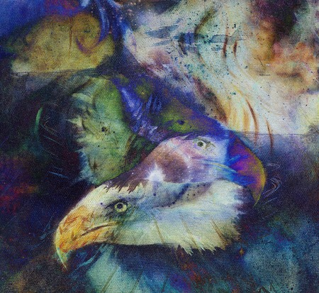 american silver eagle: painting collage of eagle on an abstract color background.