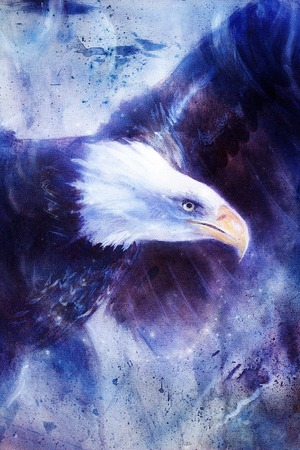 american silver eagle: painting eagle on abstract background, wings to fly, USA Symbols Freedom. Vintage style picture.