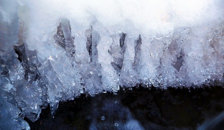 wintrily: ice water.Icicles hanging from the branch resulting from the melting snow.