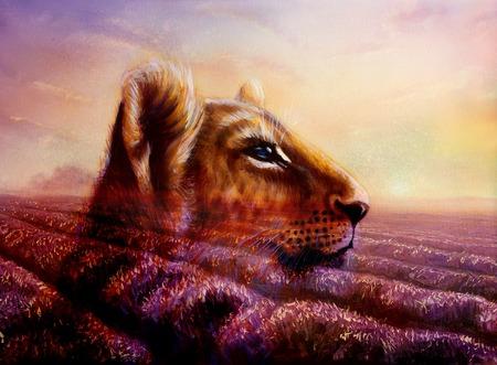 undomesticated: Little lion cub head on purple lavender fields. animal painting and violet flowers on sunset