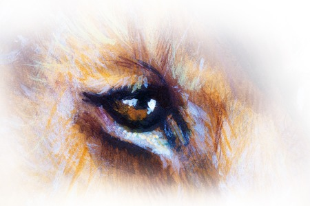 lion cub: lion cub eye. animal painting on vintage paper Stock Photo