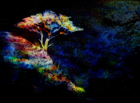 color effect: Night sky with trees, color effect collage.
